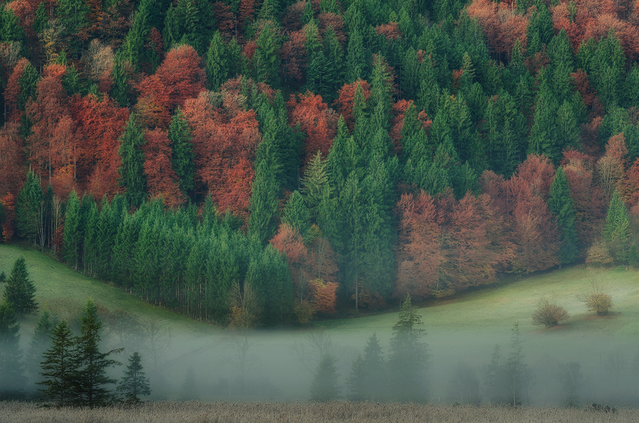 Herbst in den Ammergauer Alpen, Simon Bauer