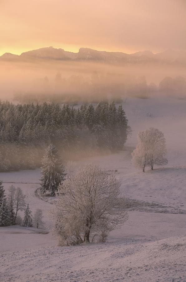 Verschneiter Morgen im Alpenvorland Simon Bauer