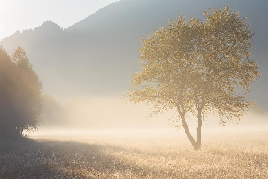 Landschaftsfotografie Simon Bauer Oberammergau Nebel Sonne
